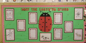 Stories & Tales, What the ladybird Heard, Books, Reading, Ladybird, Bug, Story, Classroom Display, Early Years (EYFS), KS1 & KS2 Primary Teaching Resources