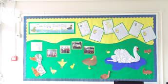 Stories & Tales, The Ugly Duckling, Ducklings, Swans, Ducks, Water, Display, Classroom Display, Early Years (EYFS), KS1 & KS2 Primary Teaching Resources