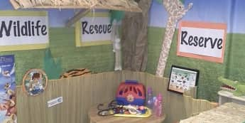Animal hospital and wildlife rescue centre role play corner