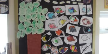 Hedgehog Display, classroom display, class display, animal, forest, hedgehog, woods, animals, pet, pets, Early Years (EYFS), KS1 & KS2 Primary Resources