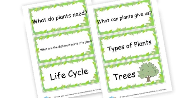Plants - Plants & Growth Primary Resources, flowers, grow, planting, garden
