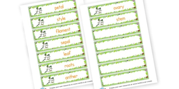 Parts of a Flower Label - Plants & Growth Keywords Primary Resources, flowers, growing, tree