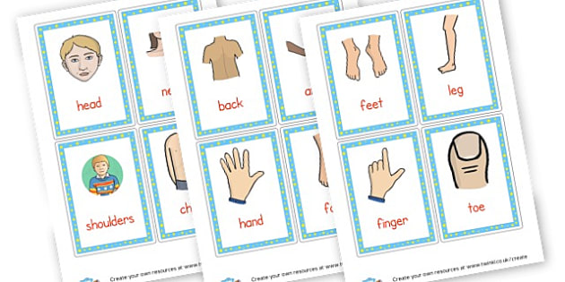 Body Parts Flash Cards - Ourselves & All About Me Primary Resources, body, hygiene, family