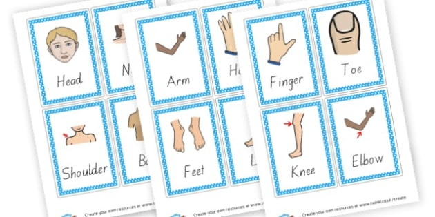 Body Parts Flashcards 4 per page - My Body Keywords Primary Resources, our body, growth, health, face
