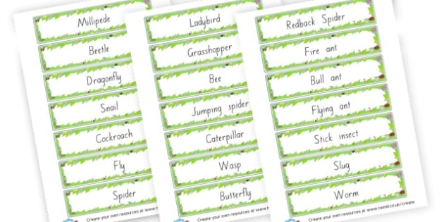 Minibeast Labels - Minibeasts Literacy Primary Resources, minibeast, bugs