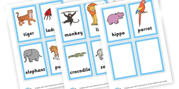 2 and 3 Syllable Animal Pictures - Primary Resources English, Literacy, Letters and Sounds, phonics
