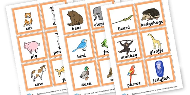 Zoo Animal Cards - The Zoo Literacy Primary Resources, animals, zoology