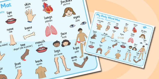 My Body Word Mat Romanian Translation - romanian, my, body, mat