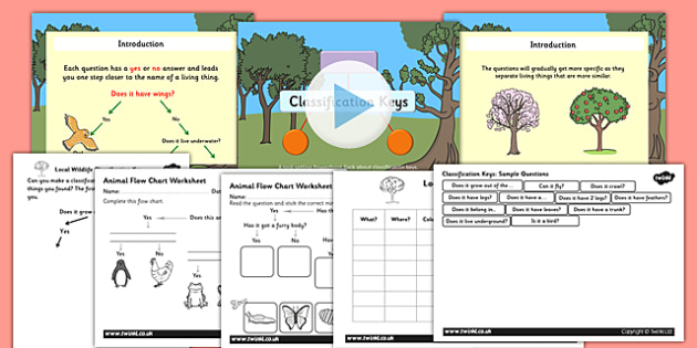 Year Classification Keys PowerPoint Task Setter Activity Pack