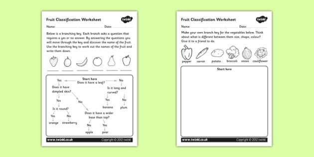Fruit Classification Worksheet - classifying fruits, classification worksheet, flow diagram, flow chart, flow chart worksheet, fruit flow chart worksheet
