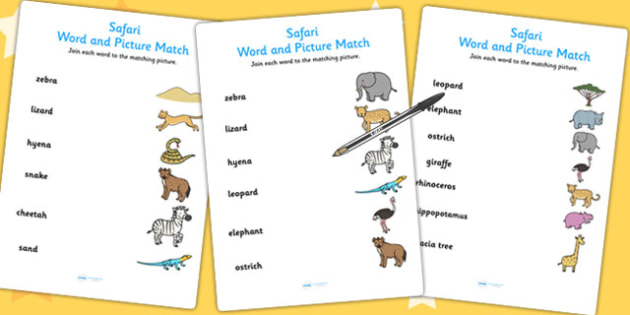 Safari Word and Picture Matching Sheets- jungle, animals