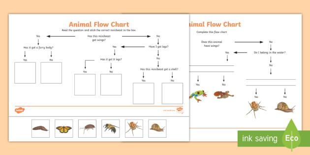 Animal Flow Chart Worksheet Animal Flow Chart Flow Chart