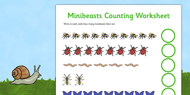 Minibeasts Counting Worksheet (Detailed Version) - Counting worksheet, 1-1, one to one,  minibeasts, counting, activity, how many, foundation numeracy, counting on, counting back, living things, snail, bee, ladybird, butterfly, spider