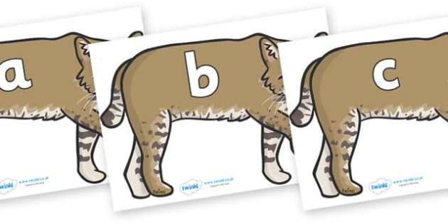 Phase 2 Phonemes on Bobcats - Phonemes, phoneme, Phase 2, Phase two, Foundation, Literacy, Letters and Sounds, DfES, display