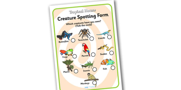 Tropical House Creature Spotting Sheet - tropical house, spotting sheet, tropical house worksheet, tropical house creature spotting worksheet