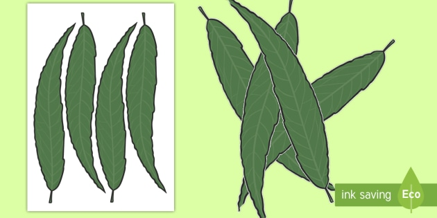 Leaf Display Cut Outs - displays, cut outs, leafs, display, leaf