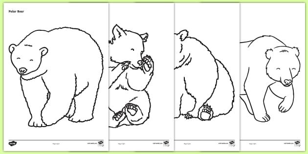 FREE! - Bears Coloring Sheets - Bears, bear, coloring, fine ...