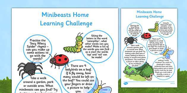 Minibeasts Home Learning Challenge Sheet Reception FS2 - EYFS, homework, Early years, insects