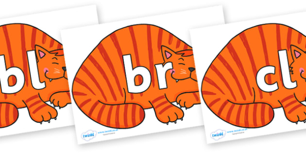 Initial Letter Blends on Hullabaloo Cat to Support Teaching on Farmyard Hullabaloo - Initial Letters, initial letter, letter blend, letter blends, consonant, consonants, digraph, trigraph, literacy, alphabet, letters, foundation stage literacy