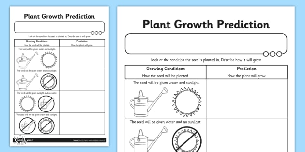 plant growth prediction worksheet plants living things plant growth. Black Bedroom Furniture Sets. Home Design Ideas