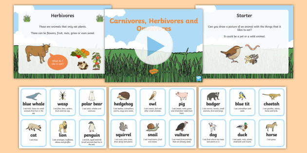Identifying Herbivores Carnivores And Omnivores Powerpoint