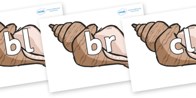 Initial Letter Blends on Sea Shells - Initial Letters, initial letter, letter blend, letter blends, consonant, consonants, digraph, trigraph, literacy, alphabet, letters, foundation stage literacy