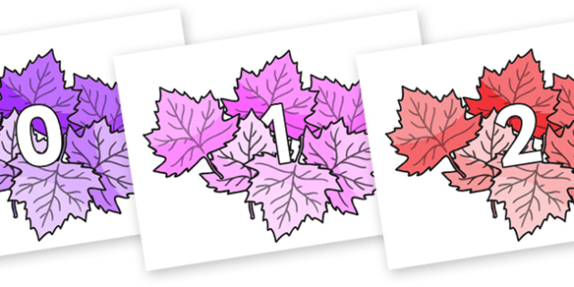 Numbers 0-100 on Autumn Leaves (Multicolour) - 0-100, foundation stage numeracy, Number recognition, Number flashcards, counting, number frieze, Display numbers, number posters