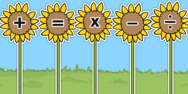 Maths Symbols on Sunflowers - sunflower, maths, symbols, display