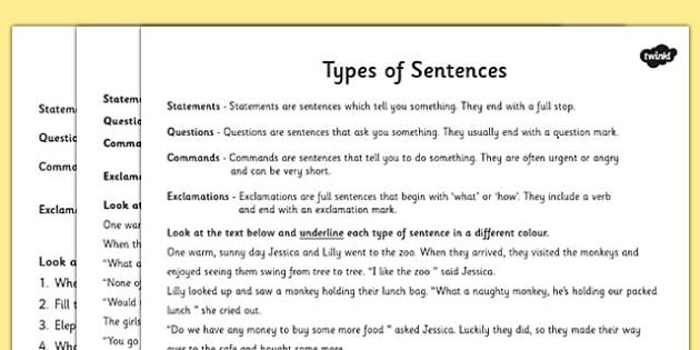 Types of Sentences Differentiated Activity Worksheet - ESL