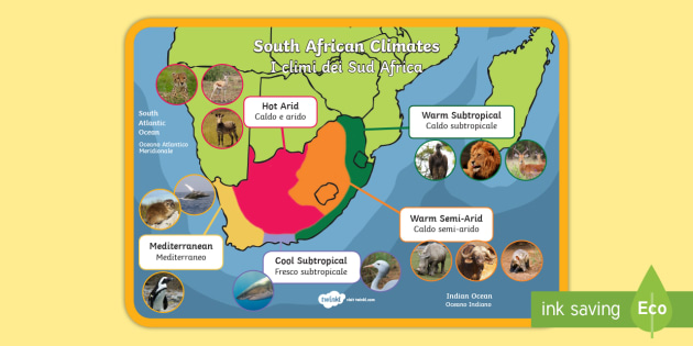 Italian English Animsld: * NEW * South African Climate Display Poster English/Italian
