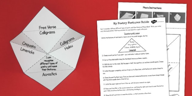Recognise Different Forms Poetry Fold Reference Leaflet