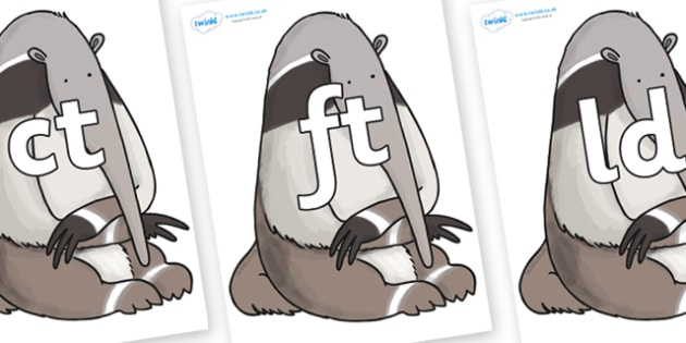 Final Letter Blends on Anteater to Support Teaching on The Great Pet Sale - Final Letters, final letter, letter blend, letter blends, consonant, consonants, digraph, trigraph, literacy, alphabet, letters, foundation stage literacy
