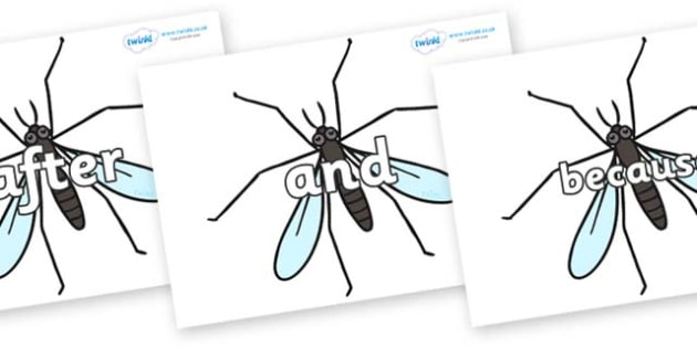 Connectives on Crane Flies - Connectives, VCOP, connective resources, connectives display words, connective displays