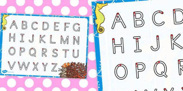 Great Barrier Reef Themed Letter Writing Worksheet - australia