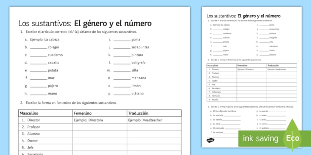 Nouns Gender and Number Worksheet / Worksheet - Spanish Grammar ...