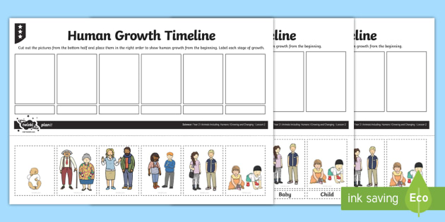 Human growth timeline worksheet activity sheet human growth human growth timeline worksheet activity sheet human growth human life cycle growing ibookread