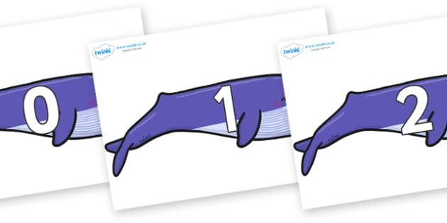 Numbers 0-31 on Whales - 0-31, foundation stage numeracy, Number recognition, Number flashcards, counting, number frieze, Display numbers, number posters