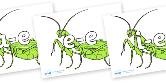 Modifying E Letters on Praying Mantis - Modifying E, letters, modify, Phase 5, Phase five, alternative spellings for phonemes, DfES letters and Sounds
