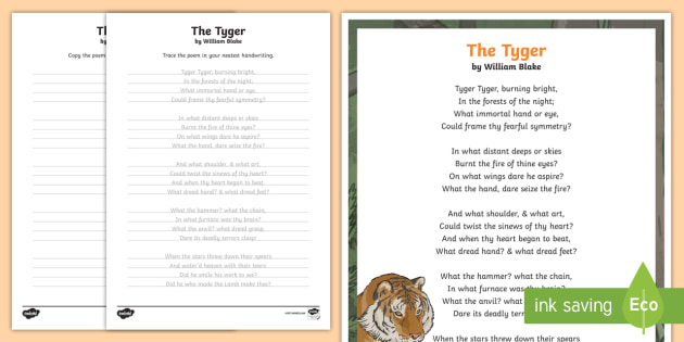 the tyger summary line by line