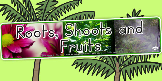 Roots Shoots and Fruits Photo Display Banner - australia, display