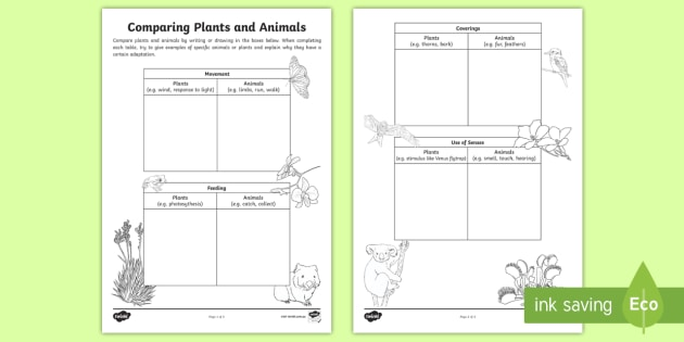 Comparing Plants And Animals Worksheet Worksheet