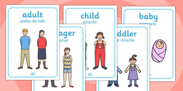 Human Growth Display Posters Polish Translation - polish