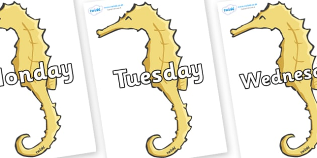 Days of the Week on Seahorses - Days of the Week, Weeks poster, week, display, poster, frieze, Days, Day, Monday, Tuesday, Wednesday, Thursday, Friday, Saturday, Sunday