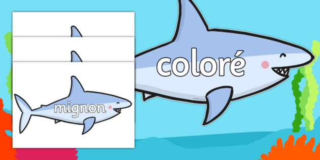 Wow Words On Sharks - french, wow, words, sharks, animals, under the sea