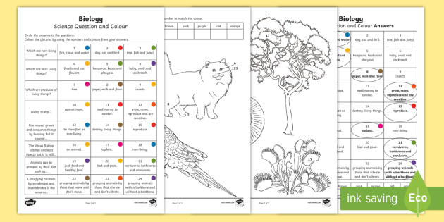 year 3 biological science questions and colouring worksheet activity sheets acssu044 living things