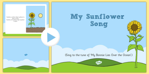 My Sunflower Song PowerPoint