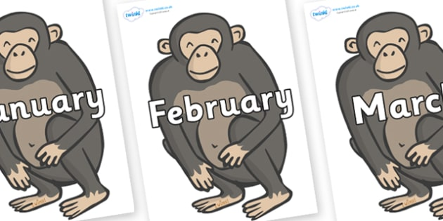 Months of the Year on Chimpanzees - Months of the Year, Months poster, Months display, display, poster, frieze, Months, month, January, February, March, April, May, June, July, August, September
