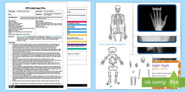 EYFS Art Straw Skeletons Adult Input Plan and Resource Pack