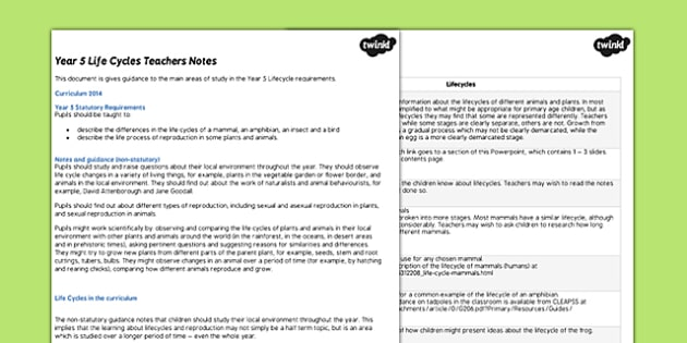 Science KS2 Year 5 Lifecycles Teachers Notes - life cycles, note