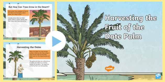 Harvest Dating's Blog